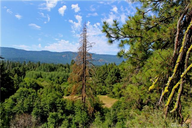 0 Lot C3 Airport Rd, Cle Elum, WA 98922 (#1154032) :: Keller Williams Realty