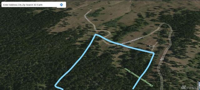 0 Lonesome Grouse Road, Winthrop, WA 98862 (#1154339) :: Ben Kinney Real Estate Team