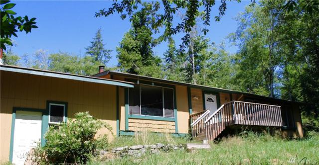 111 Deer Rd, Quilcene, WA 98376 (#1155641) :: Ben Kinney Real Estate Team