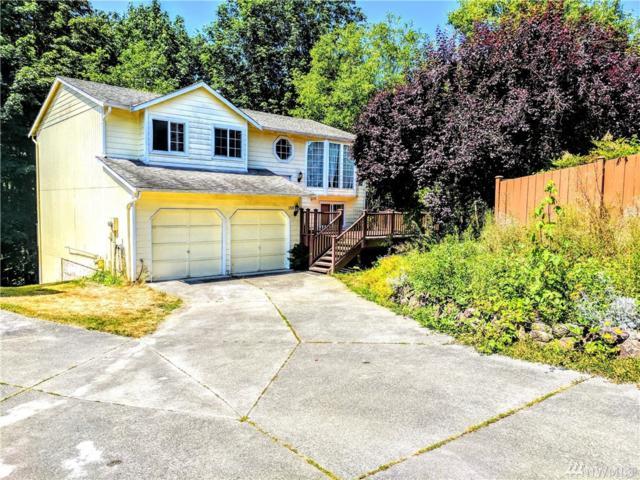 1328 85th Dr NE, Lake Stevens, WA 98205 (#1156665) :: Ben Kinney Real Estate Team