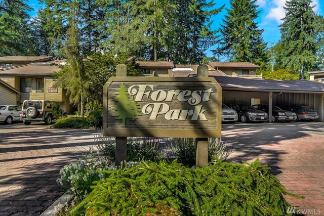 19115 Ballinger Wy NE #203, Lake Forest Park, WA 98155 (#1158185) :: Windermere Real Estate/East
