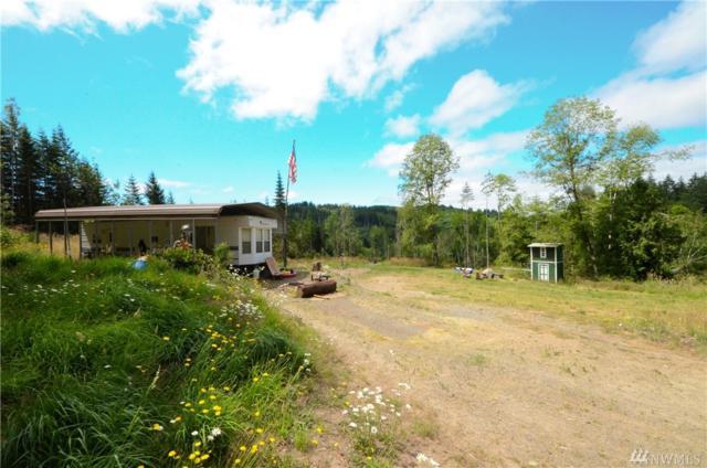 254 Williams Creek Rd, Oakville, WA 98568 (#1158279) :: Ben Kinney Real Estate Team