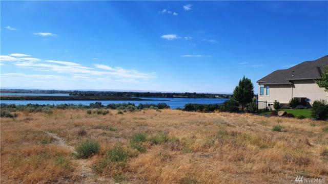 8682 Dune Lake Rd SE, Moses Lake, WA 98837 (#1158595) :: Ben Kinney Real Estate Team