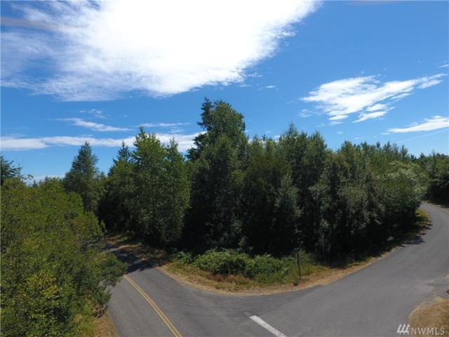 0-xxx Woodland Dr, Port Townsend, WA 98368 (#1159260) :: Ben Kinney Real Estate Team
