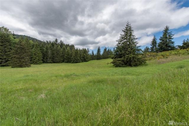 0-xxx Texas Valley Rd, Sequim, WA 98382 (#1160977) :: Ben Kinney Real Estate Team