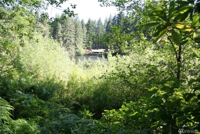 0 Lot 18 Collins Lake Dr E, Tahuya, WA 98588 (#1161487) :: Ben Kinney Real Estate Team