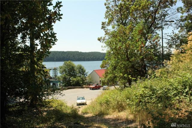 49 Killbrew Lake Rd, Orcas Island, WA 98280 (#1162232) :: Brandon Nelson Partners