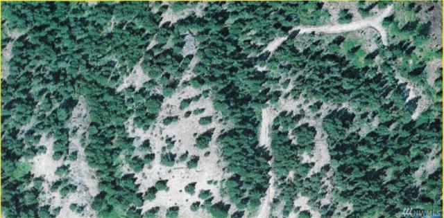 0 Tbd Pine Creek Rd, Tonasket, WA 98855 (#1162556) :: Homes on the Sound