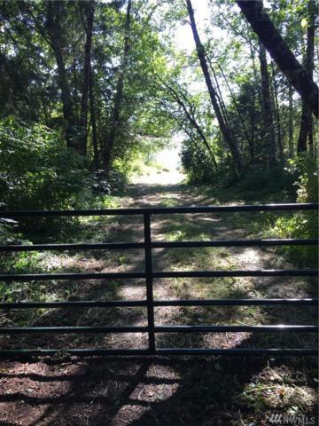 1105 State Route 109, Hoquiam, WA 98550 (#1162648) :: Ben Kinney Real Estate Team