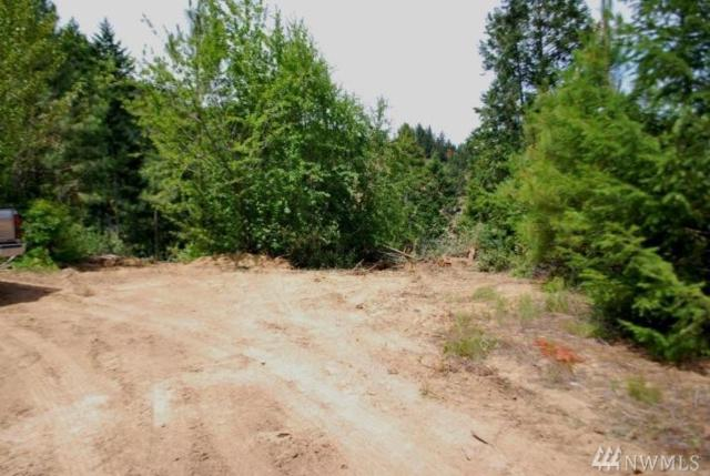 0 Brisky Canyon Rd, Cashmere, WA 98815 (#1162808) :: Nick McLean Real Estate Group