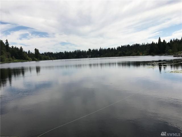 17320 W Lake Desire Dr SE, Renton, WA 98058 (#1162896) :: Real Estate Solutions Group