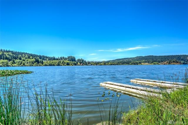 6480 Campbell Lake Rd, Anacortes, WA 98221 (#1163216) :: Homes on the Sound