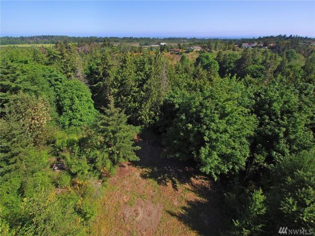 0-Lot 3 Cougar Heights Drive, Sequim, WA 98382 (#1163621) :: Homes on the Sound