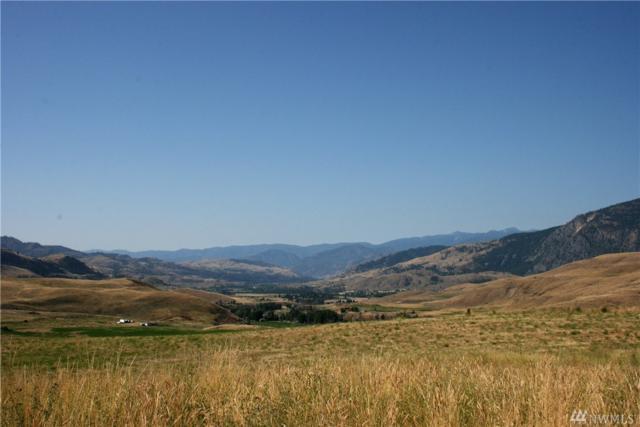 68 Upper Beaver Creek Road, Twisp, WA 98856 (#1163794) :: Ben Kinney Real Estate Team
