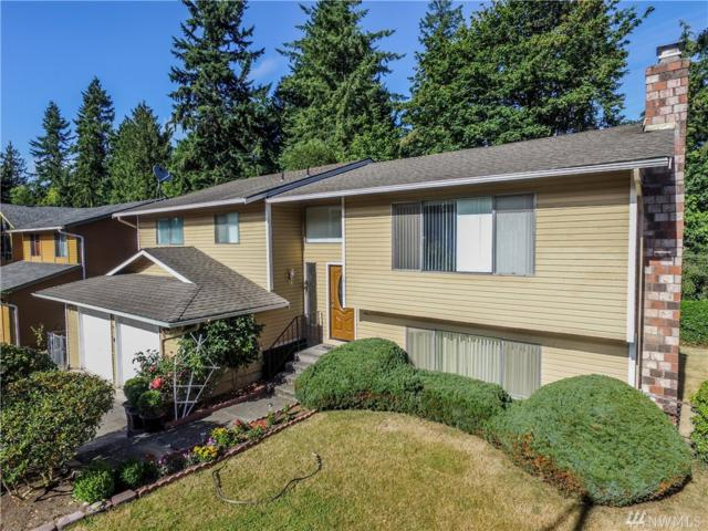 14117 59th Ave SE, Everett, WA 98208 (#1164803) :: Real Estate Solutions Group