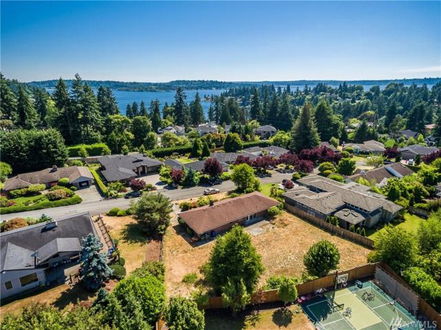 9330 Sunset Wy, Bellevue, WA 98004 (#1165532) :: The Eastside Real Estate Team