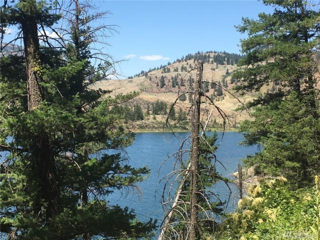 10-(Lot 10) Lakefront Dr, Oroville, WA 98844 (#1165741) :: Homes on the Sound