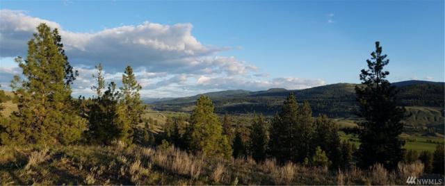 107 Cayuse Mountain Rd, Tonasket, WA 98855 (#1165916) :: Ben Kinney Real Estate Team