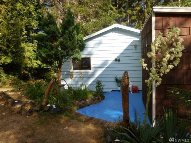 308762 N Us Hwy 101, Brinnon, WA 98320 (#1166500) :: Ben Kinney Real Estate Team