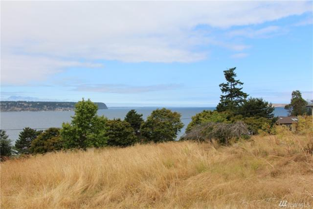 45-Lot Sunset Blvd, Port Townsend, WA 98368 (#1166546) :: Homes on the Sound