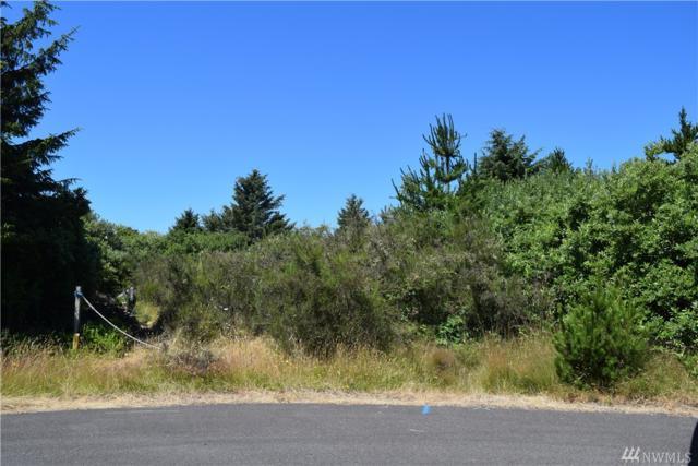 225 Muskrat Ct SW, Ocean Shores, WA 98569 (#1166599) :: Keller Williams Realty Greater Seattle