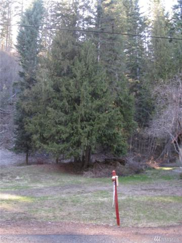 0-Lot 28 Pebble Beach Dr, Cle Elum, WA 98922 (#1166893) :: Ben Kinney Real Estate Team