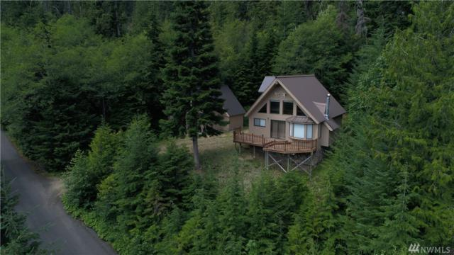 131 Wilderness Lane, Easton, WA 98925 (#1167152) :: Ben Kinney Real Estate Team