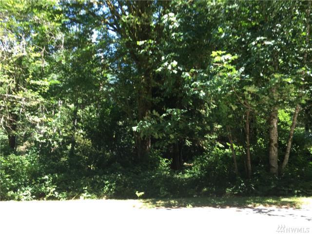 64666 NE 177th St, Baring, WA 98224 (#1167201) :: Ben Kinney Real Estate Team