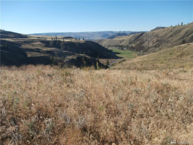 2830-Lot 4(D) Antoine Creek Rd, Chelan, WA 98816 (#1167414) :: The Home Experience Group Powered by Keller Williams