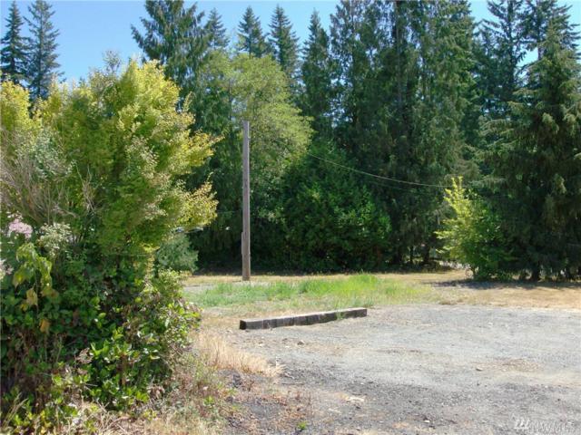 12721 Mac's Loop Rd, Granite Falls, WA 98252 (#1167714) :: Ben Kinney Real Estate Team