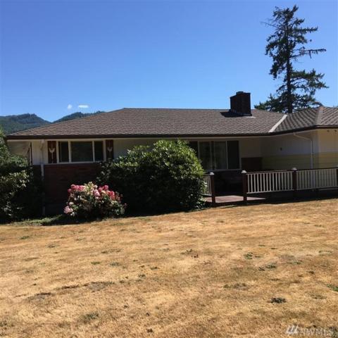 163 Uden Rd E, Glenoma, WA 98336 (#1168892) :: Ben Kinney Real Estate Team