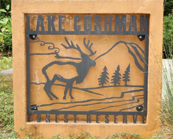 12 Lake Cushman Forest Reserve, Hoodsport, WA 98548 (#1169186) :: Brandon Nelson Partners