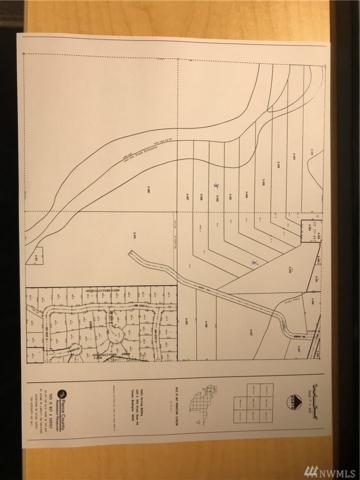 56226 Murray Rd E, Ashford, WA 98304 (#1169378) :: Ben Kinney Real Estate Team