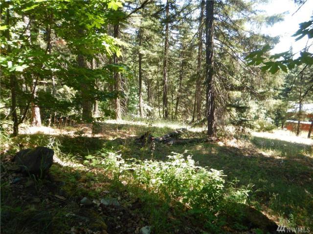 0-Lot 6 Lake Forest Dr, Ronald, WA 98940 (#1169497) :: Ben Kinney Real Estate Team