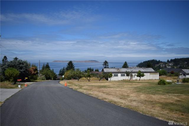 520 Dennis Blvd, Port Townsend, WA 98368 (#1170245) :: Ben Kinney Real Estate Team