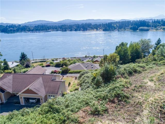 164 NW Carter Farms Ct, Bremerton, WA 98310 (#1170920) :: Ben Kinney Real Estate Team