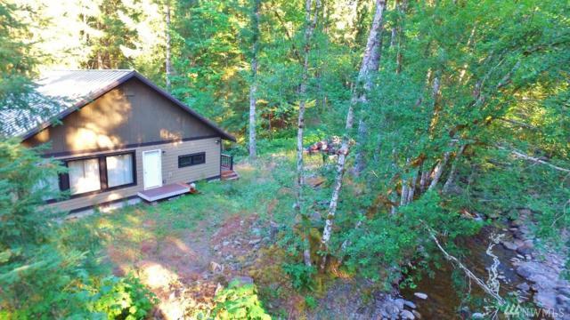 161 Coal Creek Dr, Packwood, WA 98361 (#1171141) :: Homes on the Sound