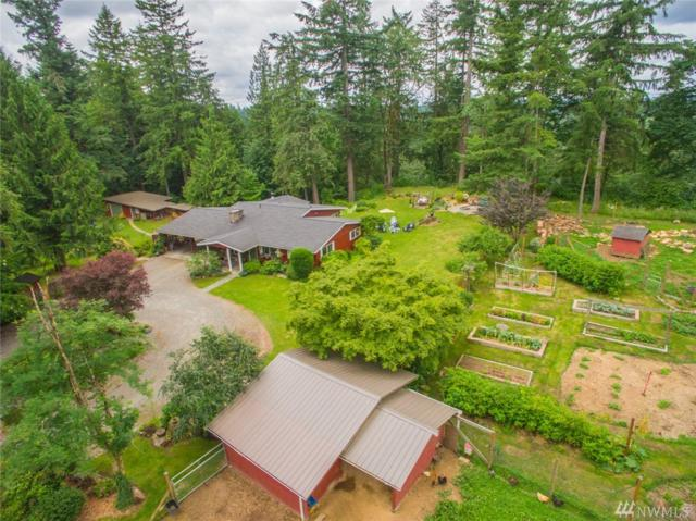 24031 248th Ave SE, Maple Valley, WA 98038 (#1171359) :: Keller Williams - Shook Home Group