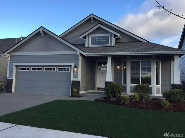 716 Mandee St SE, Lacey, WA 98513 (#1171420) :: Ben Kinney Real Estate Team