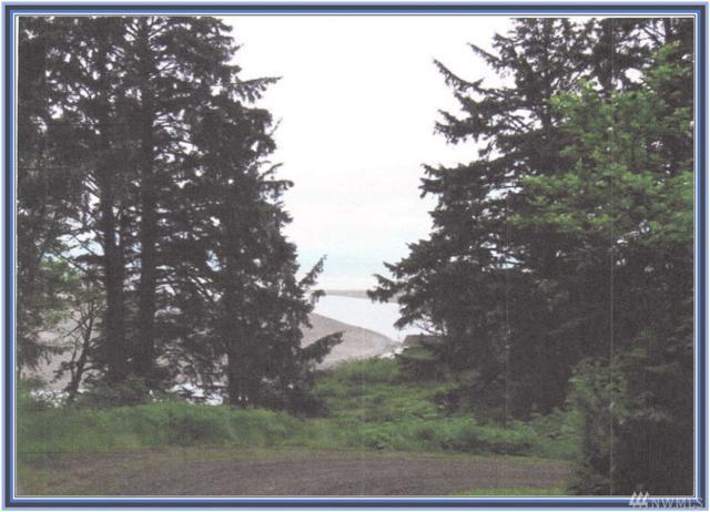 2500 Ocean View Lane, Copalis Beach, WA 98535 (#1171892) :: Ben Kinney Real Estate Team