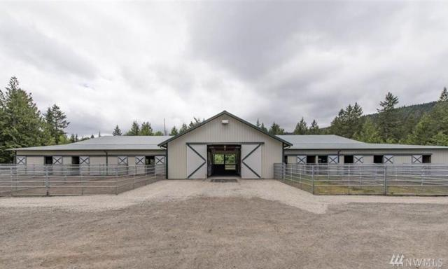 263 Texas Valley Rd, Sequim, WA 98382 (#1171975) :: Ben Kinney Real Estate Team