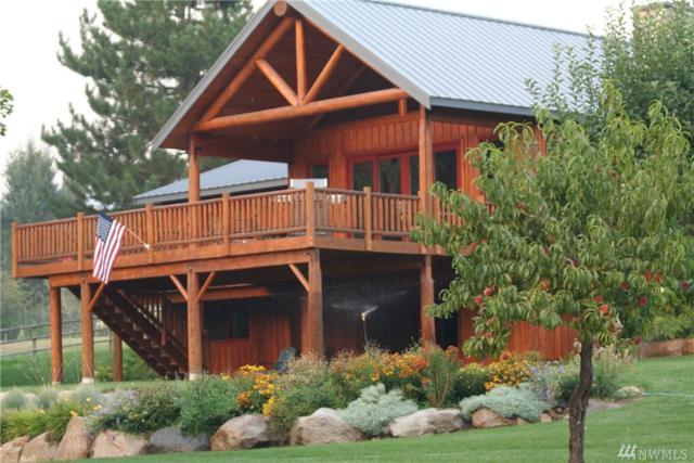 448 Balky Hill Rd, Twisp, WA 98856 (#1172660) :: Ben Kinney Real Estate Team