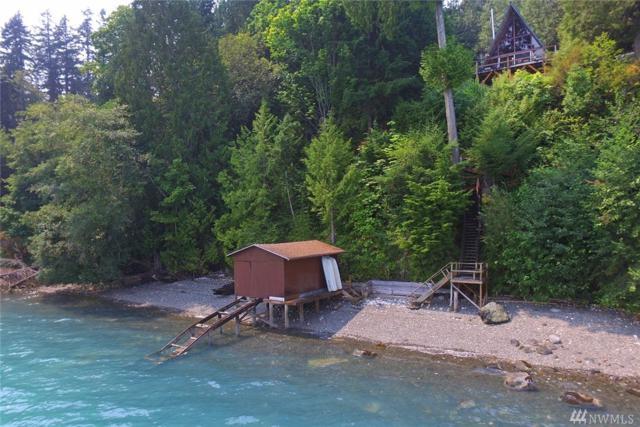 33 Mcdonald Cove Rd, Brinnon, WA 98320 (#1172878) :: Ben Kinney Real Estate Team