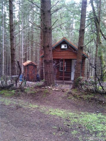 11218 W Vancouver Ave, Steilacoom, WA 98388 (#1173075) :: Ben Kinney Real Estate Team