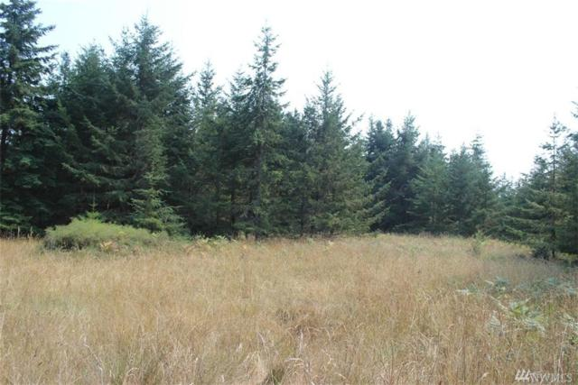 0-Lot 9 Ridgedale Rd, San Juan Island, WA 98250 (#1173181) :: Homes on the Sound