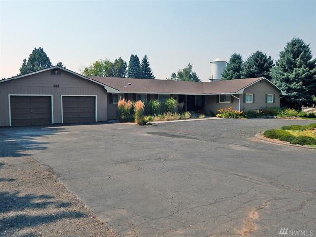 603 S Coal Creek Rd, Harrington, WA 99134 (#1173543) :: Ben Kinney Real Estate Team
