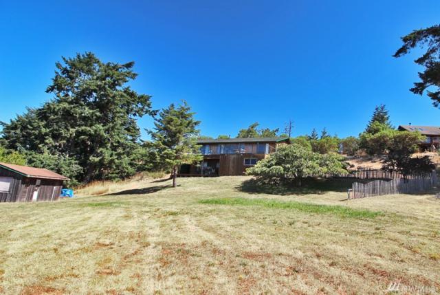 636 Treeline Dr, San Juan Island, WA 98250 (#1173721) :: Ben Kinney Real Estate Team