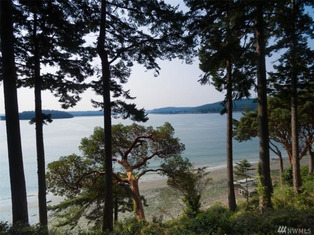 7001 Salmon Beach Rd, Anacortes, WA 98221 (#1173722) :: Ben Kinney Real Estate Team