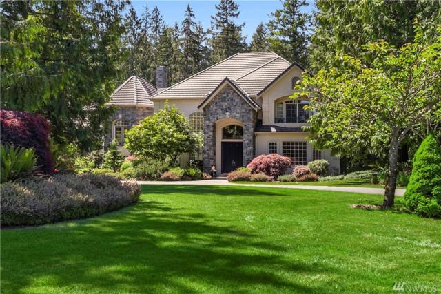 505 289th Place NE, Carnation, WA 98014 (#1173817) :: Ben Kinney Real Estate Team