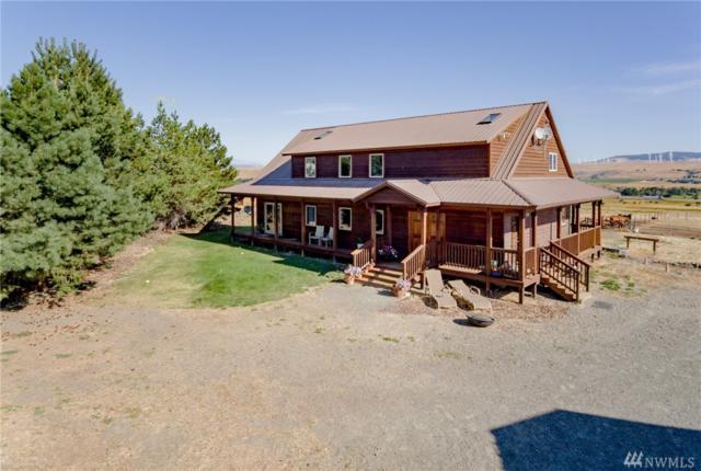 801 Watt Canyon Rd, Thorp, WA 98946 (#1175477) :: Ben Kinney Real Estate Team